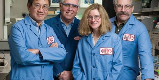 DuPont team