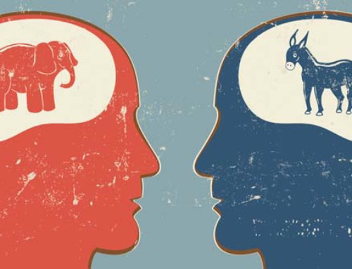 Political Bias is Hardwired